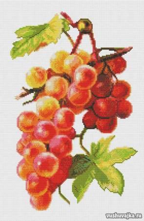 """Схема вышивки крестом """"Виноград"""""""
